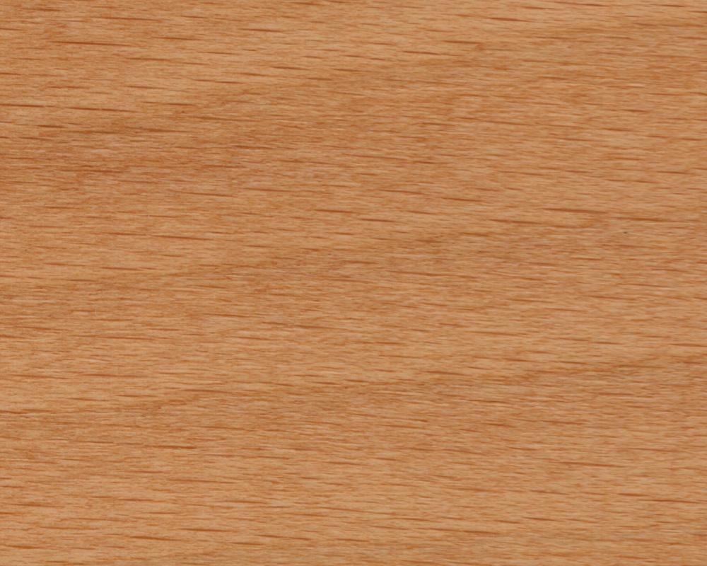 Beitskleur hout