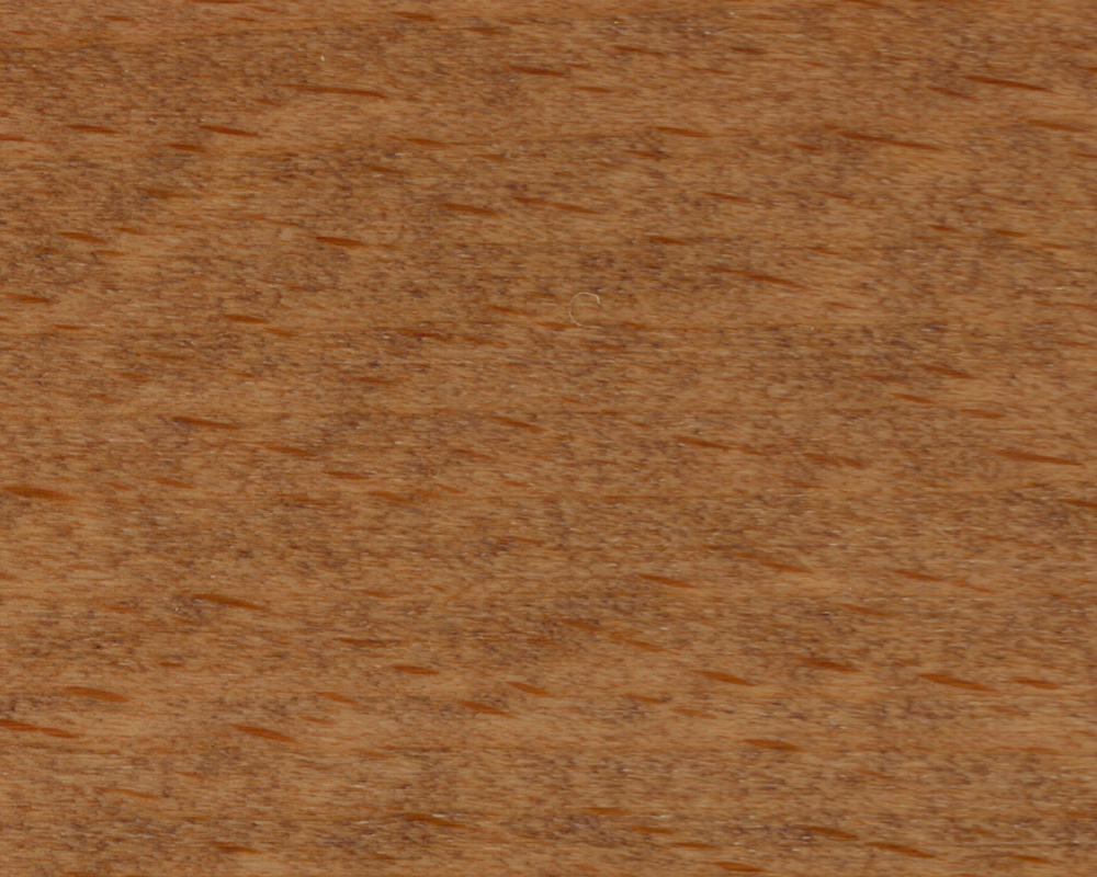 Beitskleur donker hout`